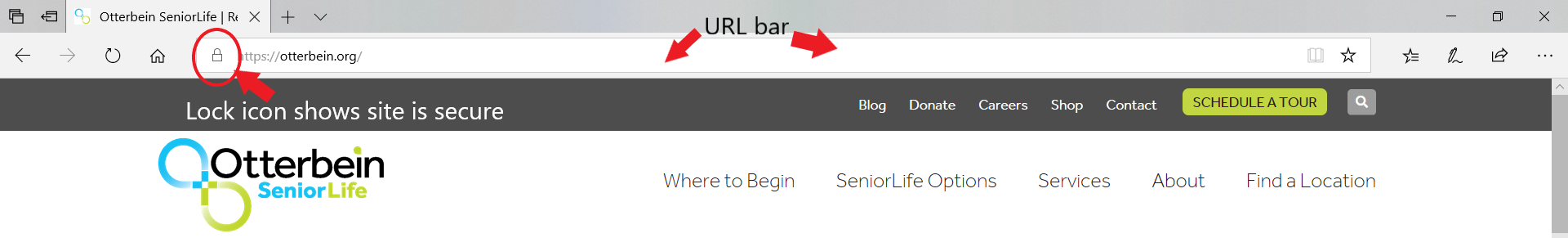 secure HTTPs in the URL bar